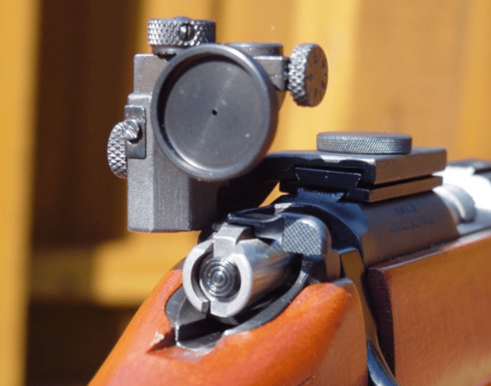 iron sights with scope for ar 15